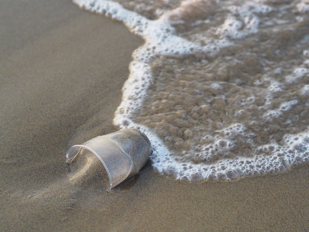 plastic cup garbage washed up on sandy beach